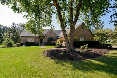Powell Single Family Home For Sale: 8771 Gosling Way