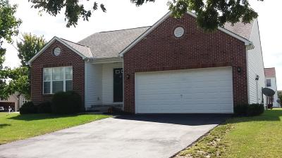 Franklin County, Delaware County, Fairfield County, Hocking County, Licking County, Madison County, Morrow County, Perry County, Pickaway County, Union County Single Family Home For Sale: 2614 Prairie Grass Drive