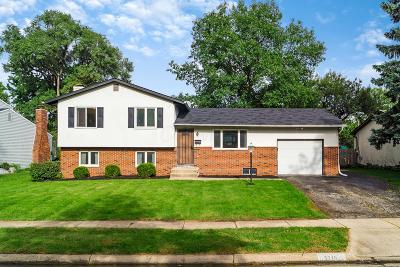 Franklin County, Delaware County, Fairfield County, Hocking County, Licking County, Madison County, Morrow County, Perry County, Pickaway County, Union County Single Family Home For Sale: 5278 Blue Ash Road