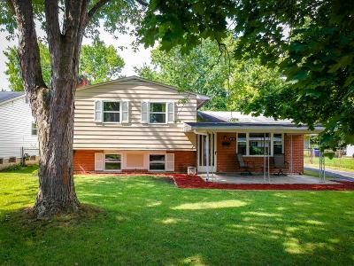 Franklin County, Delaware County, Fairfield County, Hocking County, Licking County, Madison County, Morrow County, Perry County, Pickaway County, Union County Single Family Home For Sale: 2775 Maywood Road