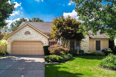Hilliard Single Family Home For Sale: 4175 Stargrass Court