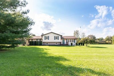 Centerburg Single Family Home For Sale: 6621 Perry Road