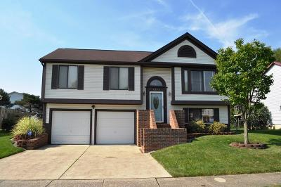 Canal Winchester Single Family Home Contingent Finance And Inspect: 6293 Upperridge Drive