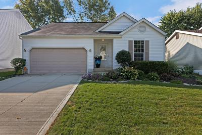 Hilliard Single Family Home For Sale: 5031 Hidden View Drive