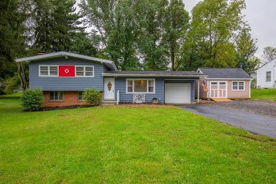 Pataskala Single Family Home For Sale: 61 3rd Avenue