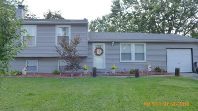 Grove City Single Family Home For Sale: 3523 Hoover Road