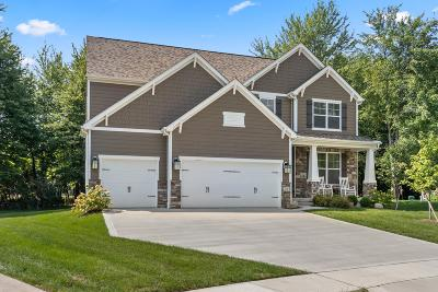 Licking County Single Family Home For Sale: 35 Calumet Drive S