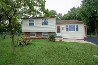 Columbus Single Family Home For Sale: 2275 Meridian Court