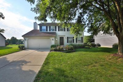 Hilliard Single Family Home For Sale: 5487 Taylor Lane Avenue