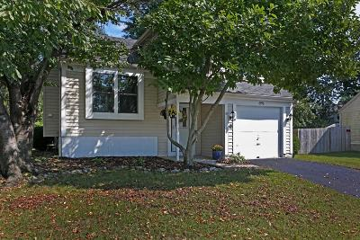Reynoldsburg Single Family Home For Sale: 6976 Finchley Drive