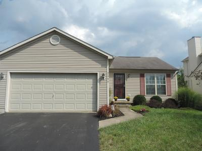Columbus Single Family Home For Sale: 2950 Tracer Road