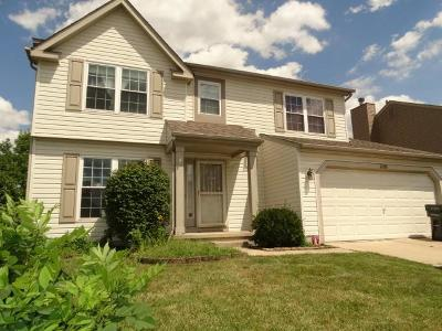 Grove City Single Family Home Contingent Finance And Inspect: 2108 Dunkeld Drive