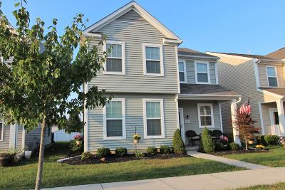 Westerville Single Family Home For Sale: 6162 Witherbee Drive