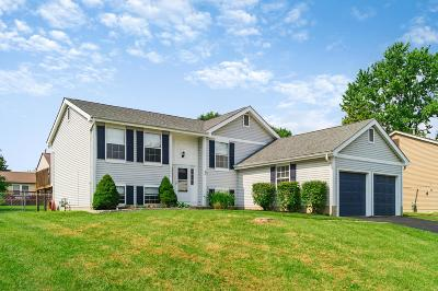 Grove City Single Family Home Contingent Finance And Inspect: 4355 Shirlene Court