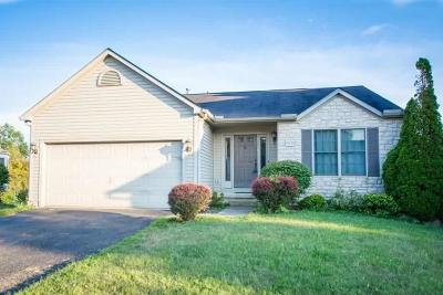 Grove City Single Family Home For Sale: 3373 Brook Spring Drive