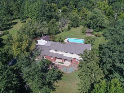 Dublin  Single Family Home For Sale: 5454 Indian Hill Road