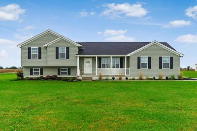 Ashville Single Family Home For Sale: 5445 Hagerty Road