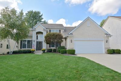 Westerville Single Family Home Contingent Finance And Inspect: 447 Bellfrey Drive