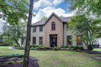 Westerville Single Family Home For Sale: 6126 Weathered Oak Court
