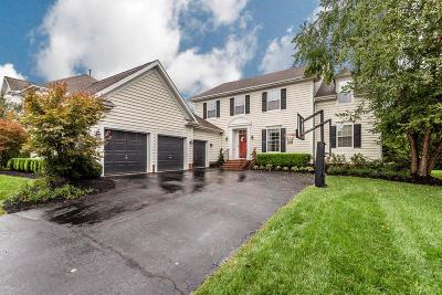 New Albany Single Family Home Contingent Finance And Inspect: 4874 Brooksview Circle