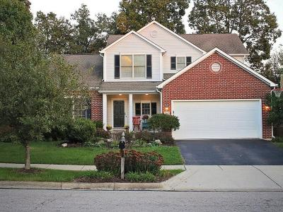 Union County Single Family Home For Sale: 1962 Chiprock Drive