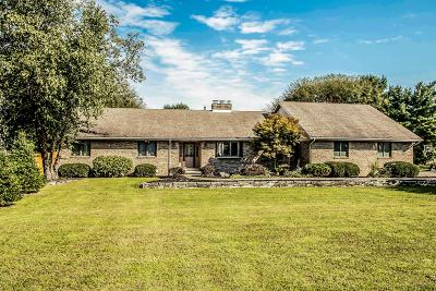 Westerville Single Family Home For Sale: 7665 Big Walnut Road