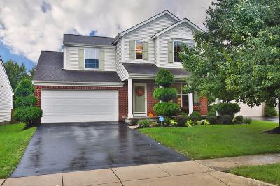 Grove City Single Family Home For Sale: 3587 Knoll Run Road