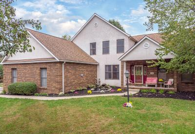 Pickerington Single Family Home Contingent Finance And Inspect: 63 Macfie Street