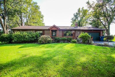Lewis Center Single Family Home For Sale: 100 Conner Lane