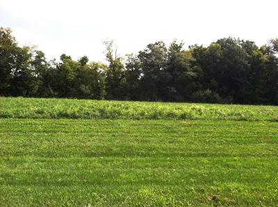 Powell Residential Lots & Land For Sale: 6893 Harriott Road