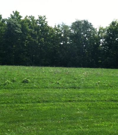 Powell Residential Lots & Land For Sale: 6897 Harriott Road