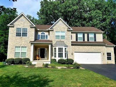 Pickerington Single Family Home Contingent Finance And Inspect: 776 Delong Street