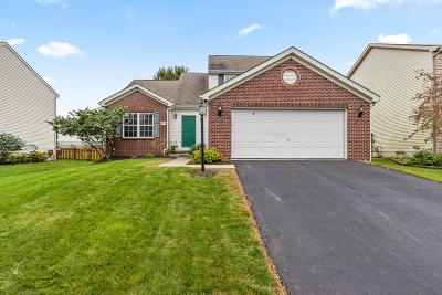 Blacklick Single Family Home Contingent Finance And Inspect: 384 Streamwater Drive