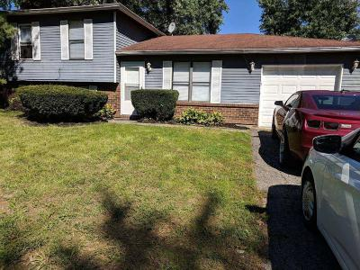 Reynoldsburg Single Family Home For Sale: 6520 Benjamin Drive