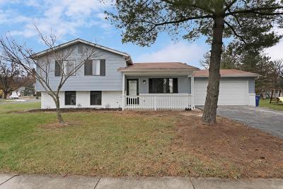 Columbus Single Family Home For Sale: 5199 Locust Post Lane