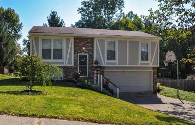 Heath Single Family Home Contingent Finance And Inspect: 1199 Briar Hill Road