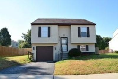 Reynoldsburg Single Family Home Contingent Finance And Inspect: 6945 Brockland Drive