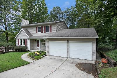 Newark Single Family Home For Sale: 1599 Stonewall Drive