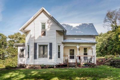 Frazeysburg Single Family Home For Sale: 10410 Blackrun Road