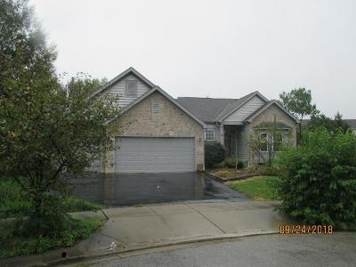 Blacklick Single Family Home For Sale: 7801 Narrow Leaf Court