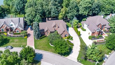 Westerville Single Family Home For Sale: 6900 Stillwater Cove