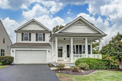 Blacklick Single Family Home For Sale: 675 Redwood Valley Drive