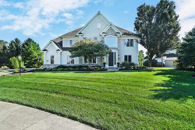 Westerville Single Family Home Contingent Finance And Inspect: 8273 Rookery Way