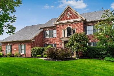 Dublin  Single Family Home Contingent Finance And Inspect: 8258 Inistork Court