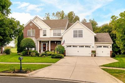 Powell Single Family Home For Sale: 4225 Scioto Parkway