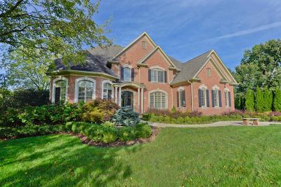 Dublin Single Family Home For Sale: 8015 Balmoral Court