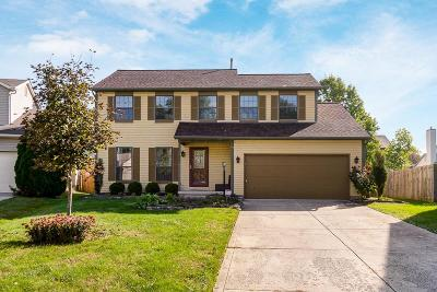 Dublin Single Family Home For Sale: 7762 Hathaway Park Court