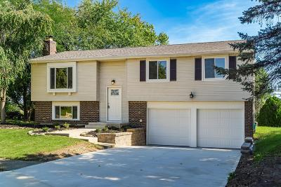 Union County Single Family Home Contingent Finance And Inspect: 9626 La Catina Circle