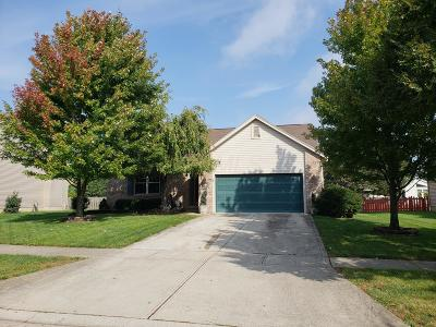 Grove City Single Family Home For Sale: 4324 Okeechobee Court