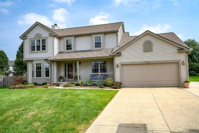 Lewis Center Single Family Home For Sale: 7795 Emerald Place